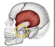 tmj physio treatment
