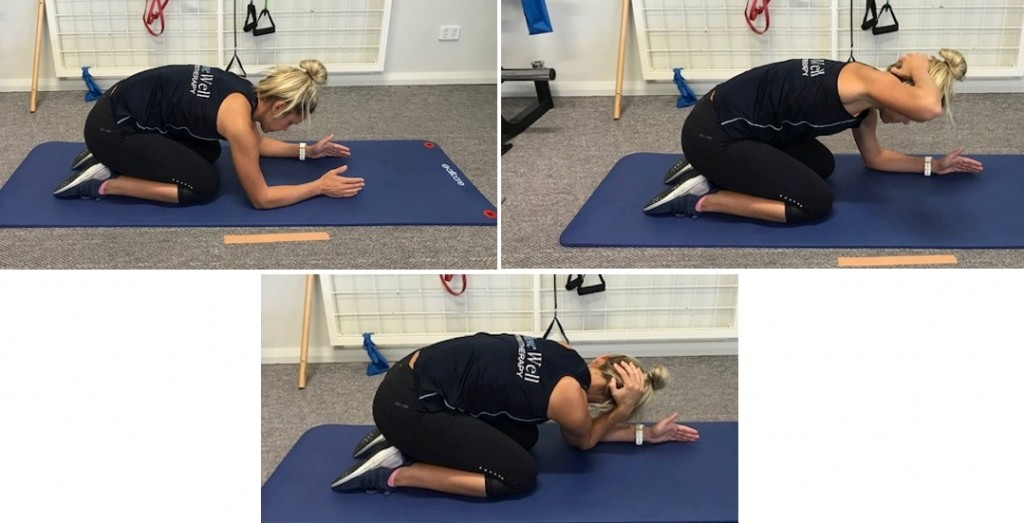 quadruped traffic spine rotation lumbar locked